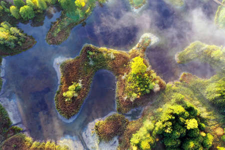 Aerial view from drone marshy lake in autumn sunny day.