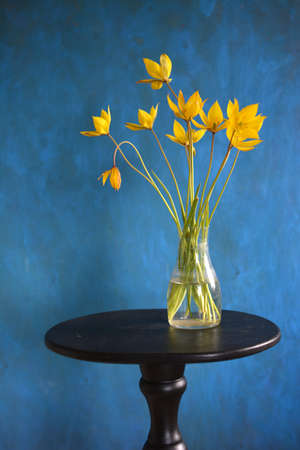 bouquet of yellow tulips in vase on black small table