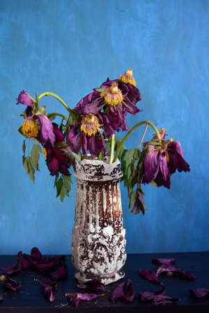 Withered pink peony flowers in cracked vintage vase