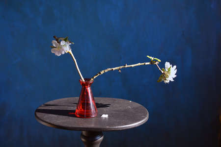 Apple tree branch blossoms in red vase on small table Stok Fotoğraf