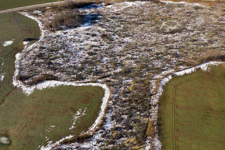 Swamp marsh in early spring, aerial view