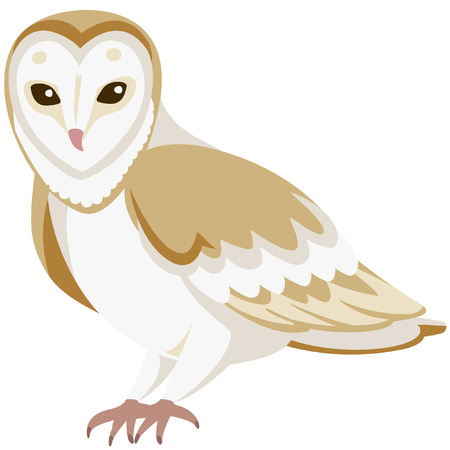 vector cartoon barn owl sitting quietly Çizim