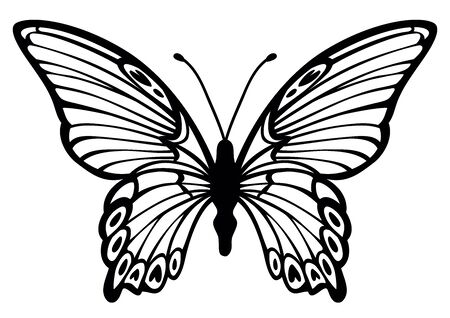 simplified stylized lovely butterfly vector outline