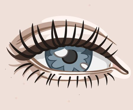 vector image of a simplified stylized color female eye