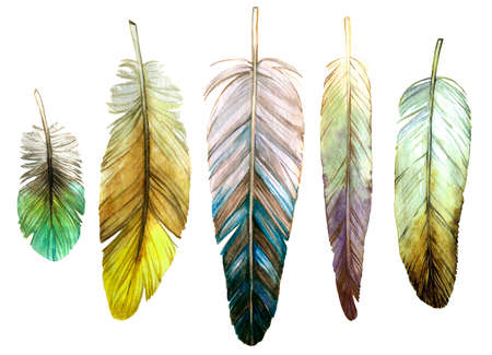 set of watercolor bird feathers in natural green natural shades on a white background