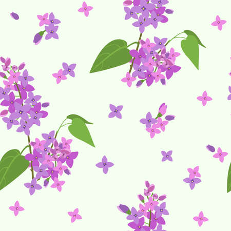 vector pattern with branches of blooming lilacs and individual flowers on a gentle green background