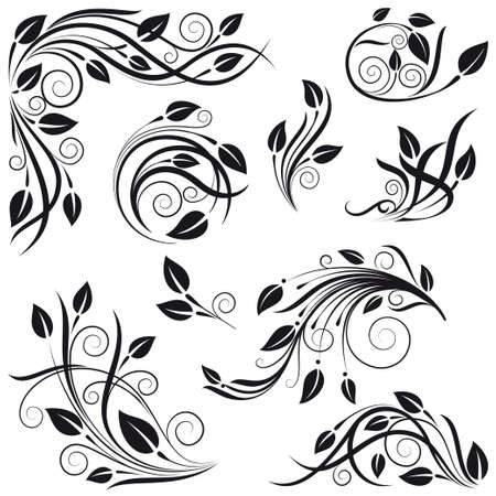 calligraphy frame: elementos de dise�o floral