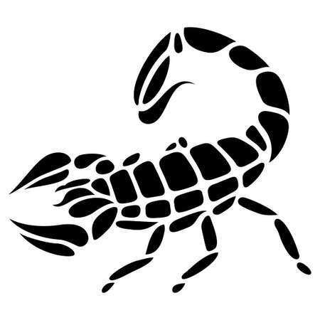 scorpion tattoo vector illustration illustration