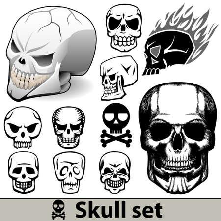 cranium: skull set