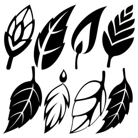 leaf set Stock Vector - 18294995