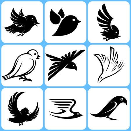 paloma caricatura: pájaros iconos conjunto