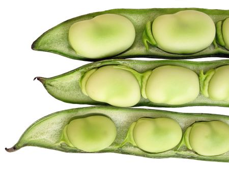 Broad been seeds in pods                             Stock Photo