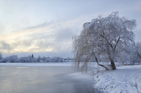 Winter landscape with lake and trees covered with frost photo