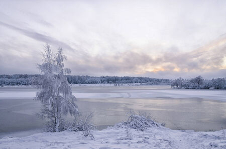 Winter evening landscape with a lake and trees in the frost photo