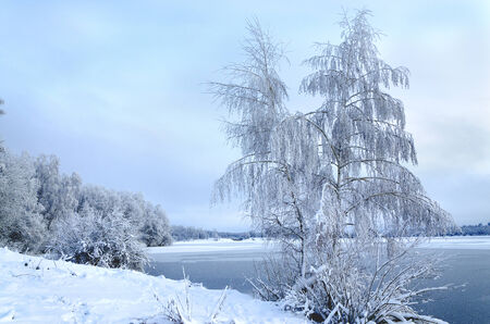 Winter landscape with trees, covered with hoarfrost and views on the frozen lake photo