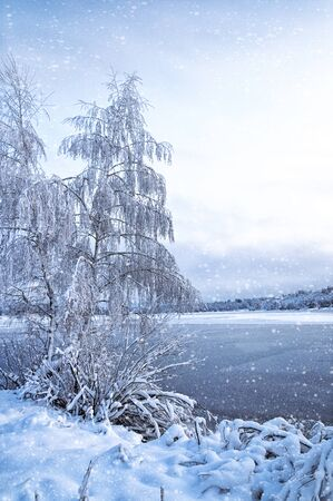 Winter landscape with trees, covered with hoarfrost and views on the frozen lake