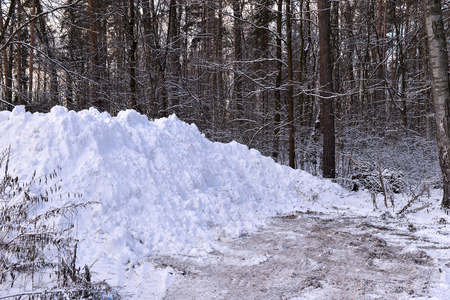 tree removal service: A pile of snow when clearing the road in the woods. Stock Photo