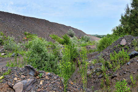 dumps: Dumps rock mountains from industrial quarries.