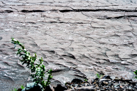 Dry cracked earth. The concept of global warming