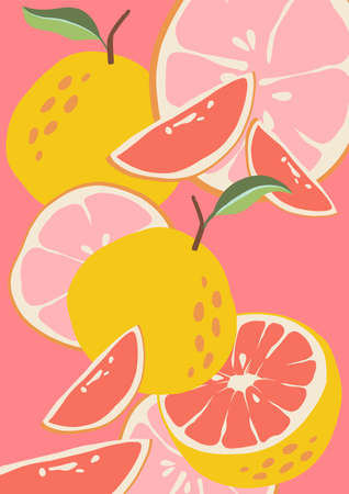 Abstract grapefruit. Composition citrus fresh. Healthy food for vegan in modern style, colorful fruits vector set. illustration for poster, postcard. Wallpaper on the Kitchen or rest. leaflet or menu.