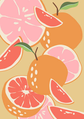 Abstract grapefruit. Pink background. Composition citrus fresh. Healthy food for vegan in modern style, colorful fruits vector set. Horizontal illustration. Border line.
