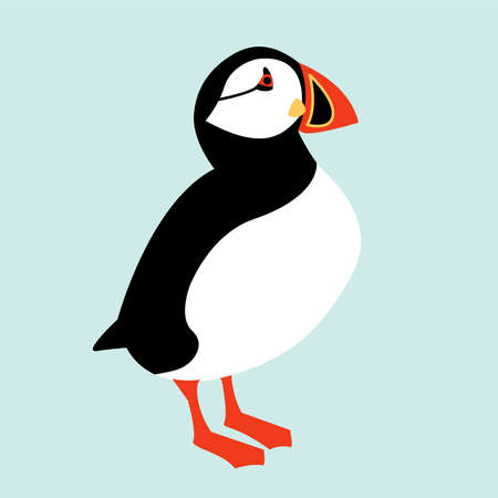 IJslandse papegaaiduiker vogel pictogram. Vector illustratie