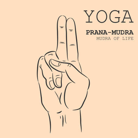 Hand in yoga mudra. Prana-Mudra. Vector illustration.