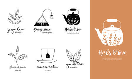 Hand drawn tea set in doodle style. Vector illustration