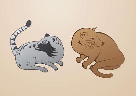 mongoose: Luwak  Illustration