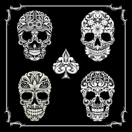schedel Ornamental Collecties