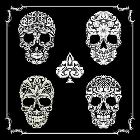 skull Ornamental Collections  Vector