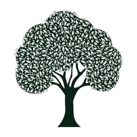 feuille arbre: Arbre Feuille