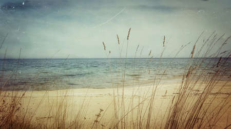 secluded: Blue sea on a secluded beach with golden yellow sand