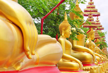 Row of delicate image of buddha in Wat Raikhing temple, Nakornpathom, Thailand. Stock Photo