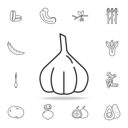 Garlic bulb icon. Set of fruits and vegetables icon. Premium quality graphic design. Signs, outline symbols collection, simple thin line icon for websites, web design, mobile app on white background.
