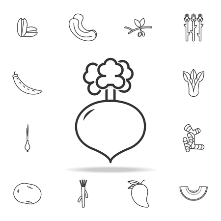 Radish icon. Set of fruits and vegetables icon. Premium quality graphic design. Signs, outline symbols collection, simple thin line icon for websites, web design, mobile app on white background Vettoriali