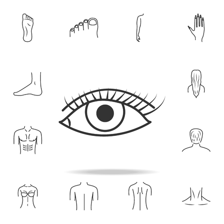 Female eye wide open with other elements vector illustration