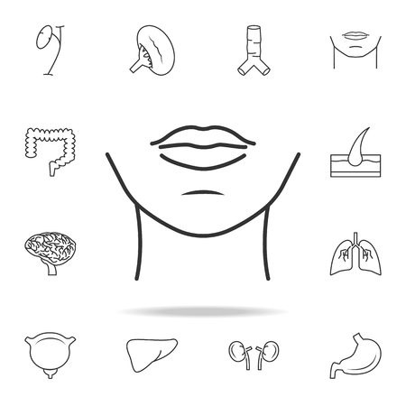 Womans chin icon with other elements vector illustration