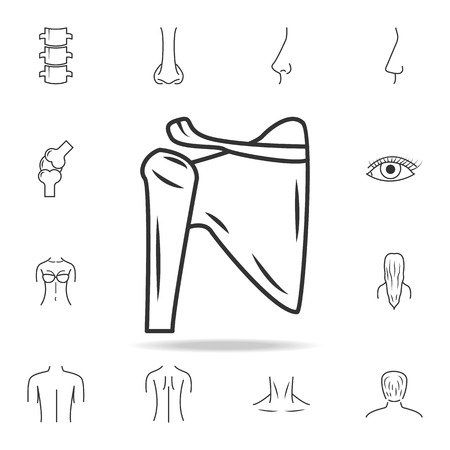 Shoulder joint, isolated icon. Detailed set of human body part icons. Premium quality graphic design. One of the collection icons for websites, web design, mobile app on white background. Vectores