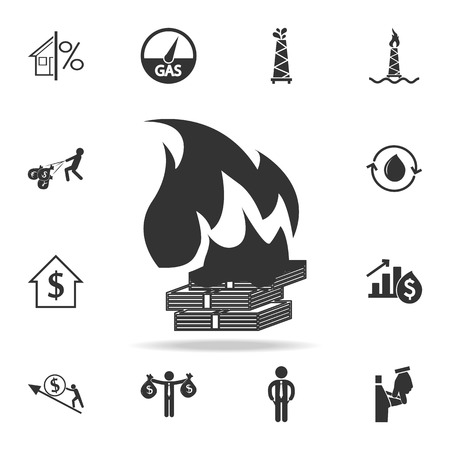 Money Burning Icon. Detailed set of finance, banking and profit element icons.