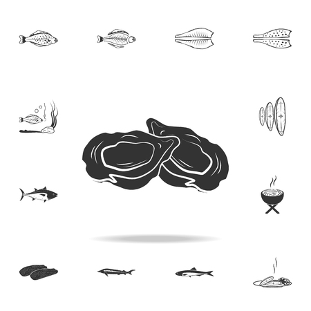 mollusks icon. Detailed set of fish illustrations. Premium quality graphic design icon. One of the collection icons for websites, web design, mobile app on white background