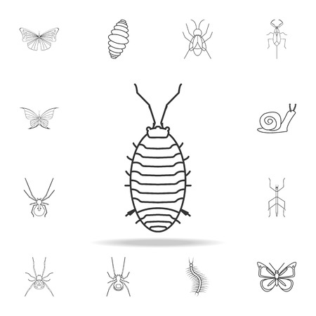aphid icon. Detailed set of insects line illustrations. Premium quality graphic design icon. One of the collection icons for websites, web design, mobile app on white background