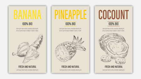 Vector hand drawn fruits of banana, pineapple and coconut posters. Vintage style healthy food concept for farmers market menu design on blackboard