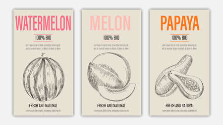 Vector hand drawn fruits of watermelon, melon and papayaposters. Vintage style healthy food concept for farmers market menu design on blackboard Ilustracja