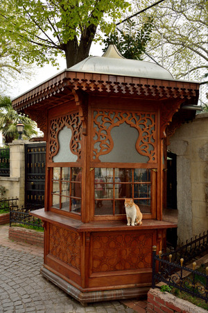shop window: Wooden kiosk in Istanbul, with brown cat. Editorial