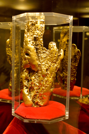 Las Vegas, Nevada, United States of America - November 24, 2017. Hand of Faith gold nugget on display at Golden Nugget casino in Las Vegas.