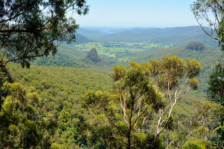 View from Bellbird Lookout in Lamington National Park, Queensland, Australia. Stock Photo