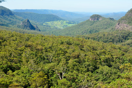 View from Yangahla Lookout in Lamington National Park, Queensland, Australia.