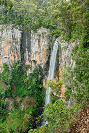 Purling Brook Falls in Springbrook National Park, Queensland, Australia. Stock Photo