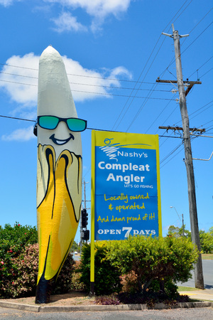 Mackay, Queensland, Australia - December 30, 2017. Big Banana statue in North Mackay, with advertisement, electricity pole and vegetation.